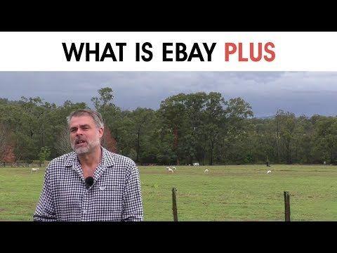 ebay plus